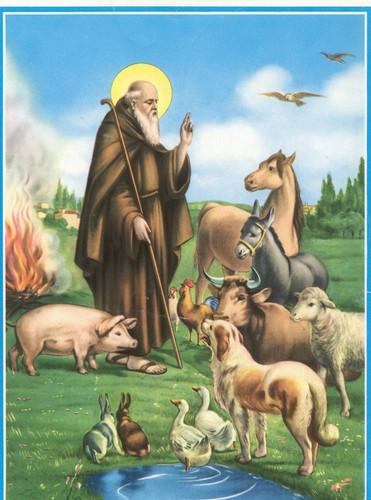 S. Antonio abate 2020 - Antica Pieve di Nuvolento